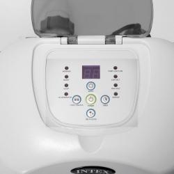 electrolyseur au sel Intex